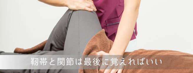 膝の靭帯関節